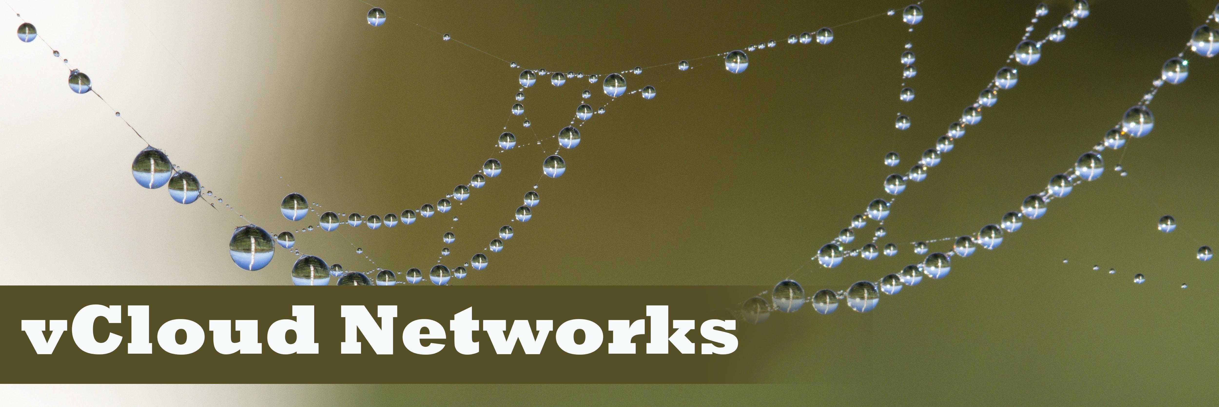 Все, что нужно знать о vCloud Networks: типы сетей в vCloud Director